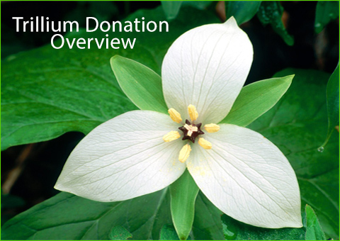 Trillium Donation Overview